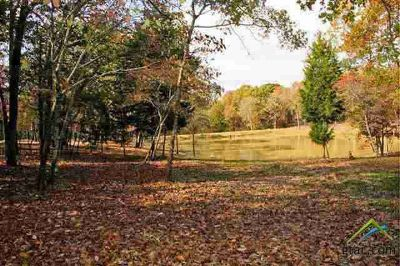 2847 Stewart Way Tyler, Gorgeous flat, wooded lot on a curve