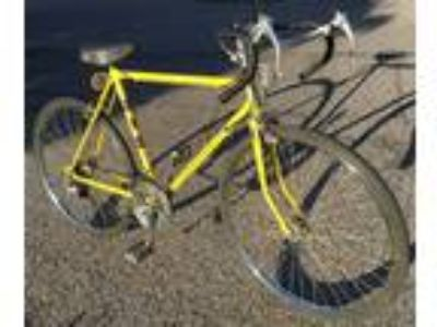 National Rand 10 Speed with 26 Inch Wheels Vintage Steel