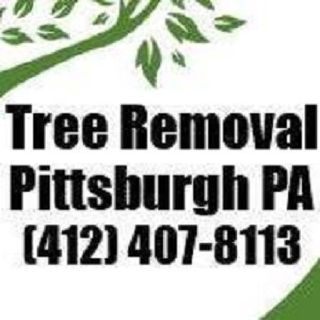 Tree Removal Pittsburgh PA