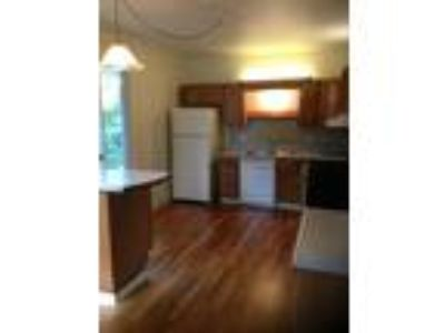 Roommate wanted to share 5+ Bedroom Two BA House...