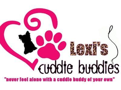 Shorkie Tzu-Yorkshire Terrier Mix PUPPY FOR SALE ADN-102144 - Chocolate Teddy Bear Face Shorkies