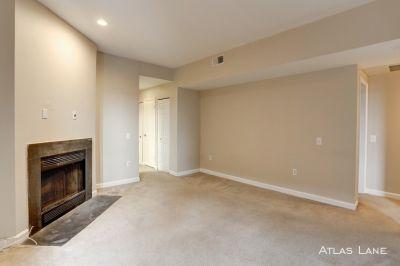 1BD/1BA Top-Floor Apartment in Adams Morgan