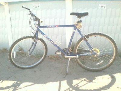 $100 bike