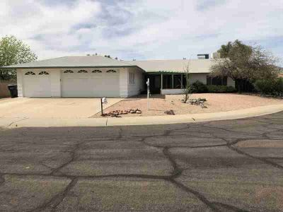 11208 S IROQUOIS Drive Phoenix Two BR, CAR LOVERS DREAM - 5 1/2