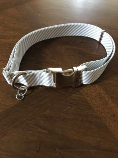 NEW Southern Dawg Light Blue Dog Collar striped by Yellow Dog Design