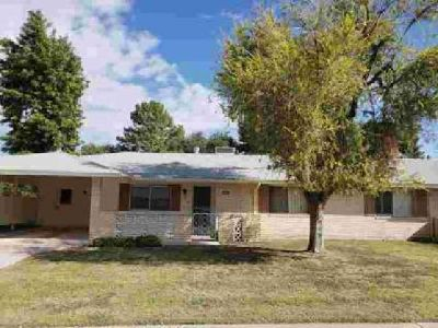 10132 W Candlewood Drive Sun City Two BR, This home is a total