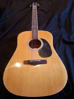 $100 Acoustic Guitar (Greg Bennett )