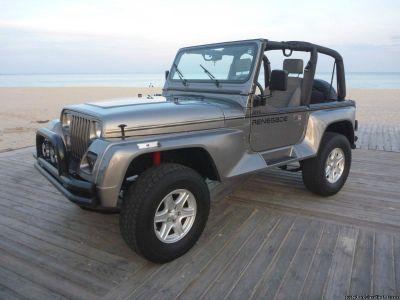 1991 Jeep Wrangler RENEGADE