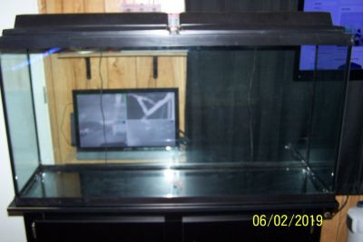 60 Gallon Tall Fish Tank, Stand, Tops and Lights, Like new Condition, Clean and Ready to Use.