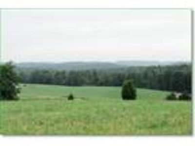 Kentucky Land 14.29 Acres Grasslands Woods