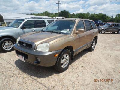 2002 Hyundai Santa Fe GLS (Gold)