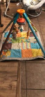 Infant Play Mat