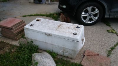 extra large cooler