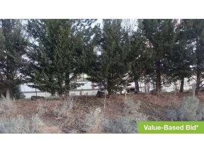 3 Bed 2 Bath Preforeclosure Property in Sun Valley, NV 89433 - Lupin Dr