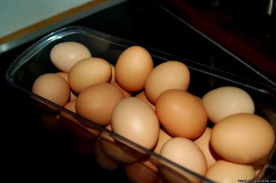 Country Fresh Large Eggs