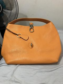 Dooney and Bourke Bag, with key fob!!
