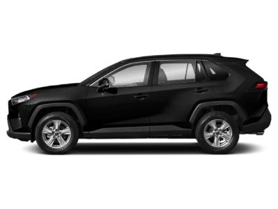 2019 Toyota RAV4 LE (Midnight Black Metallic)