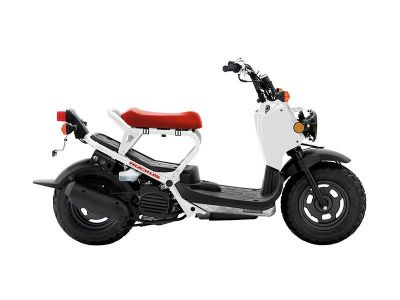 2015 Honda Ruckus 250 - 500cc Scooters South Hutchinson, KS