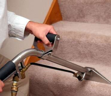 Carpet Cleaning, Area Rug Cleaning, Tile Cleaning, Hardwood Floor Cleaning Linco