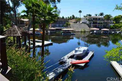 30117 Cove View Street Canyon Lake Three BR, WATERFRONT Home with