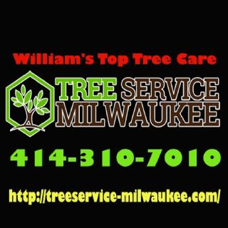 William's Top Tree Care