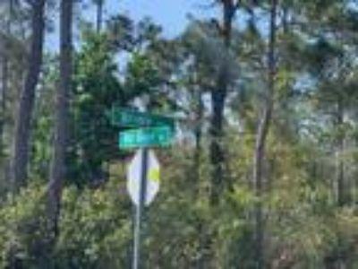 Vacant Land for sale in Saint Cloud, FL
