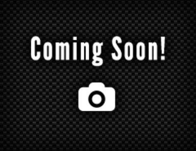 2018 Dodge Charger SRT8 Super Bee (PITCH BLACK)