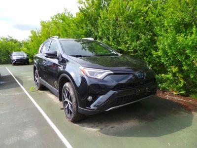 2018 Toyota RAV4 SE (Black Sand Pearl)