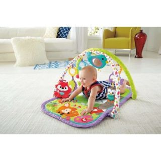 FP 3-in-1 Musical Activity Gym, LNC
