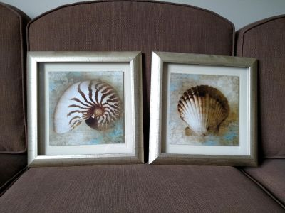 Two shell pictures
