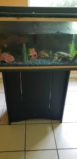 FREE aquarium with stand and decorations (does not include fish).