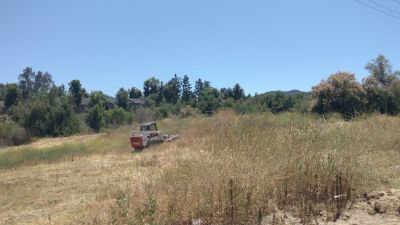 Affordable Weed Abatement Clearing in Menifee