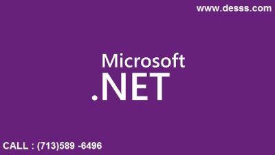 .Net Application Company