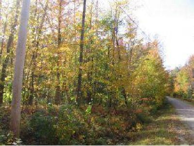 $35,000 Land - Whitingham, VT