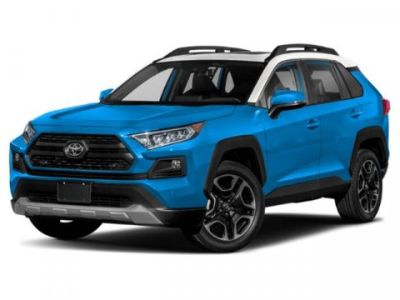 2019 Toyota RAV4 Limited (Ruby Flare Pearl)