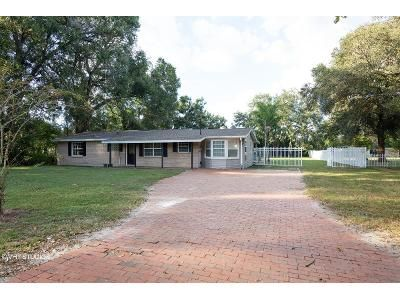 4 Bed 2 Bath Foreclosure Property in Lakeland, FL 33809 - Mccranie Rd