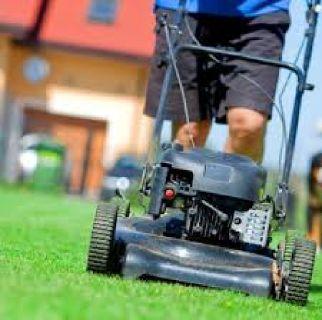 Lawn Service In Lenexa