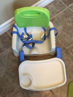 VGUC Fisher Price booster seat