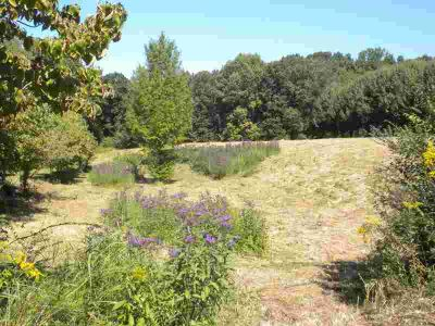 0 Wildwood Trce Winchester, 3.32 acre lot in Heatherwood