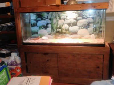 REPTILE TANK AND STAND