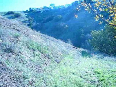 3563 N Camino Real Los Angeles, two lots for the price of
