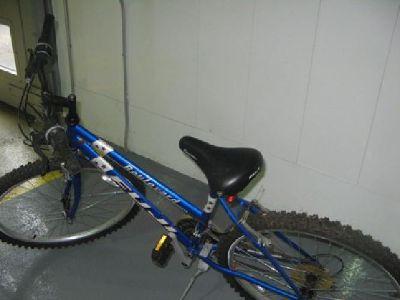 $100 Bikes