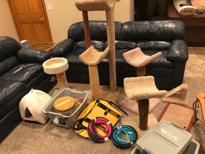 Miscellaneous Cat/ Kitten Toys, Towers, Supplies