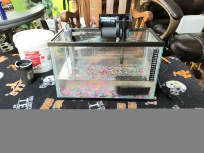 5 gallon acquarium with new filter and pump