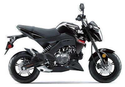 2019 Kawasaki Z125 Pro Sport White Plains, NY