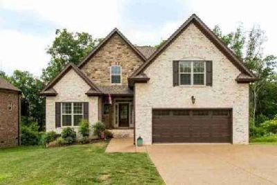 1100 Secretariat Dr Mount Juliet, stunning custom home in a