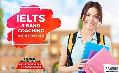 Best IELTS Coaching Classes in mohali