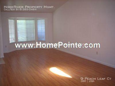 New Paint, Laminate Floors & Inside Laundry Area!