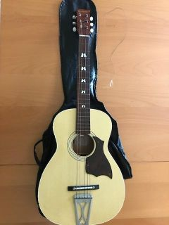 Harmony Acoustic Guitar - Matte Natural with soft case