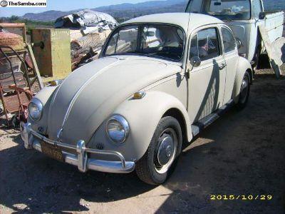VW Bug 1967